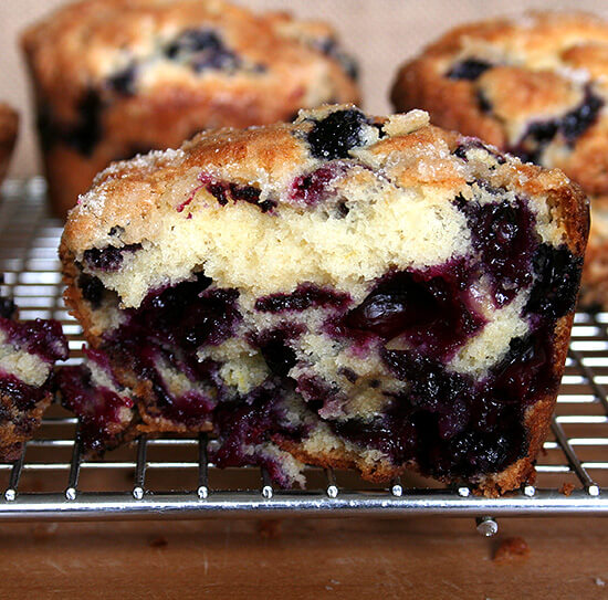 holy blueberries