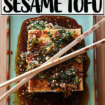 A plate of warm tofu with spicy sesame sauce.