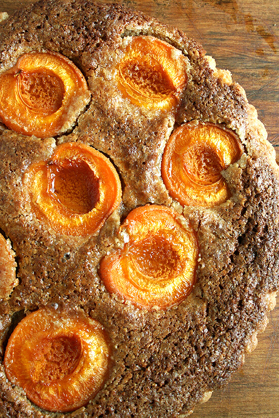 Fresh apricots and a frangipane filling make this apricot and almond tart a lovely summer picnic treat. // alexandracooks.com