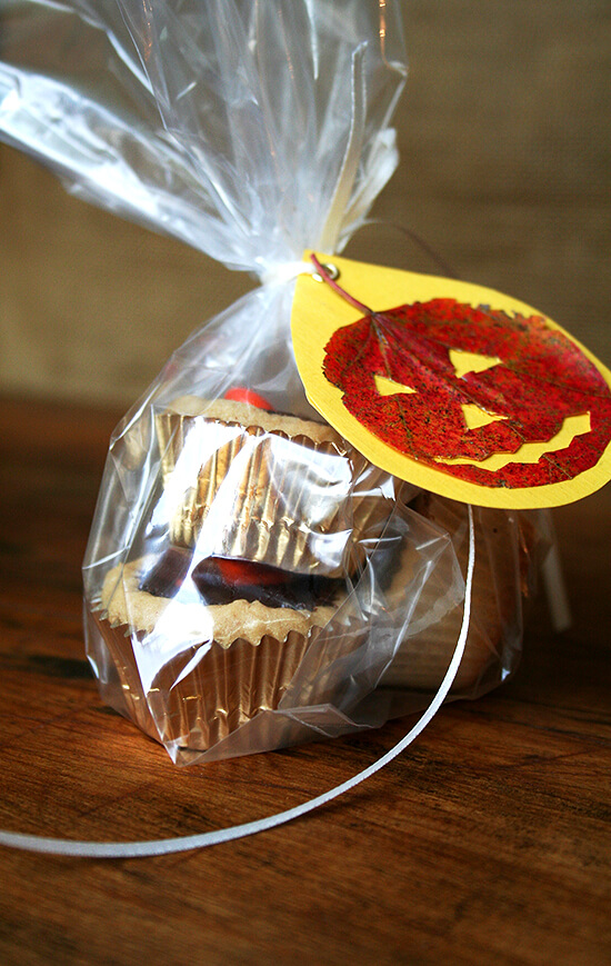 gift bag with pressed-leaf gift tag