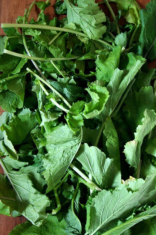 mustard greens from Olin-Fox Farms CSA