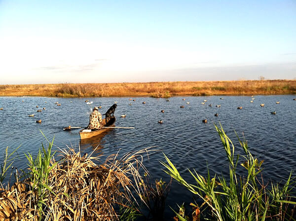A boat with a guide and a dog in the water surrounded by duck decoys.