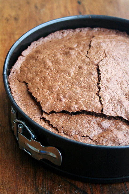 just-baked torte in spring form pan