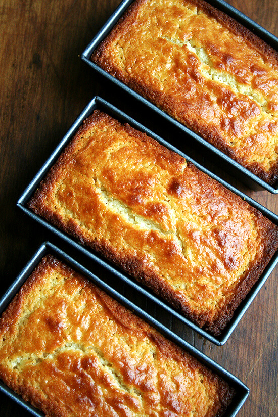 lemon-ricotta loaves, just baked