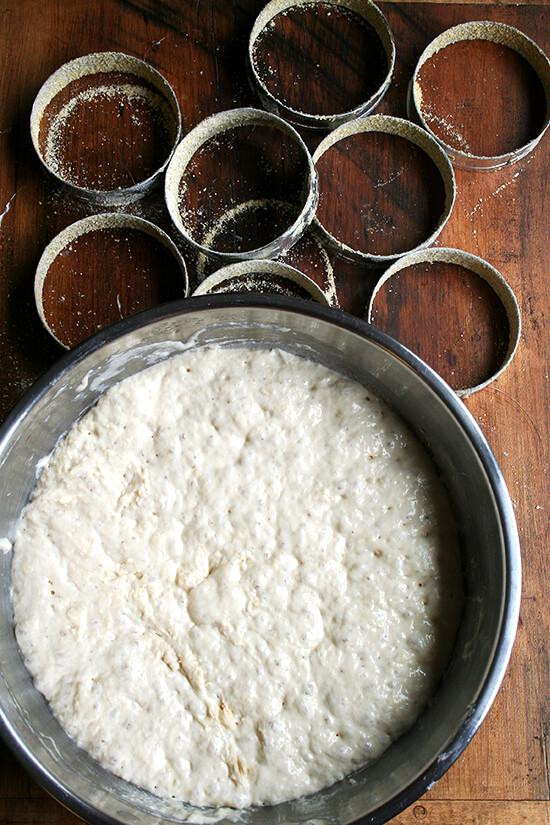 English muffin dough, rising