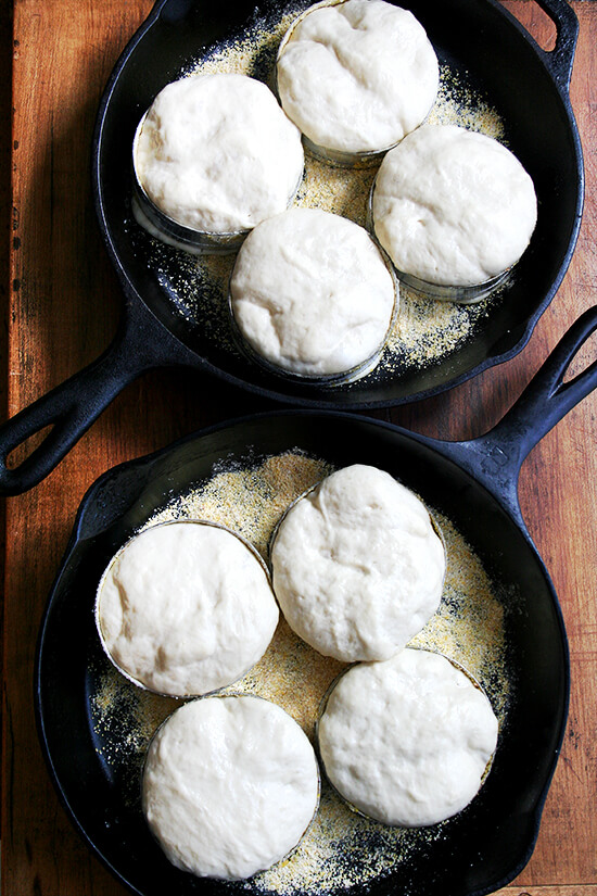 dough rising in cast iron skillets