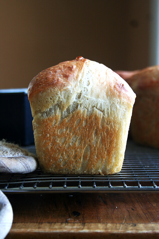 mini loaf of peasant bread