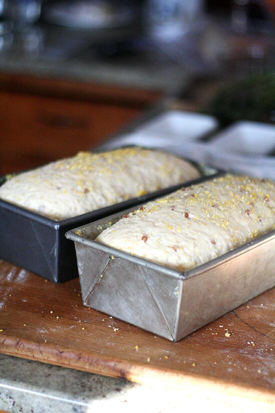wheat berry bread rising