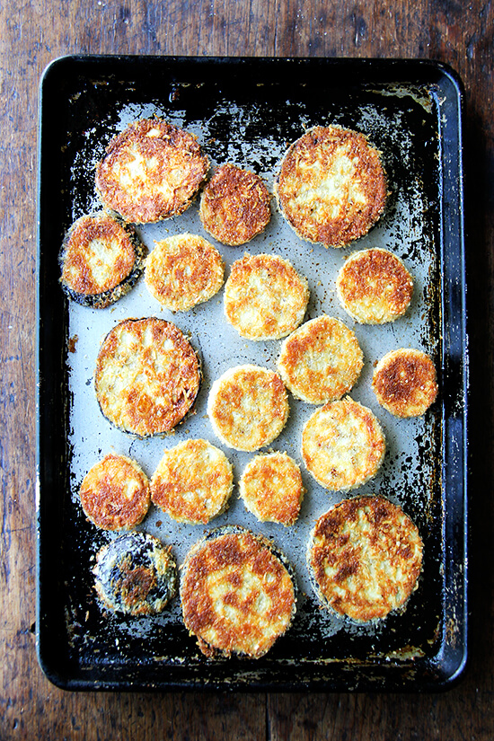 just-baked breaded eggplant rounds on a sheet pan