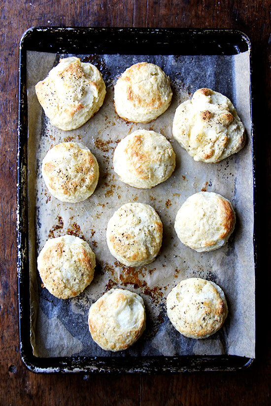 just baked buttermilk biscuits