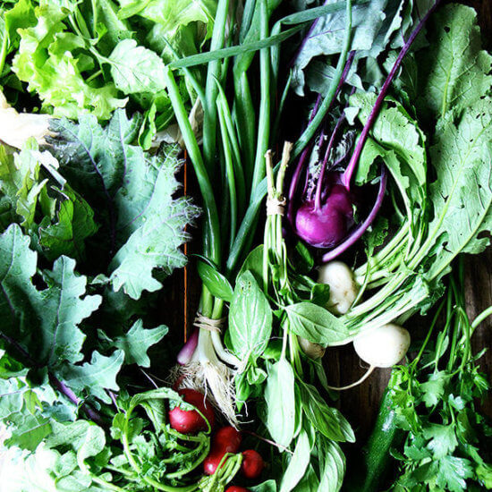 CSA Week 1: Anchovy Butter, Pickled Kohlrabi, Turnips — What to do with them?