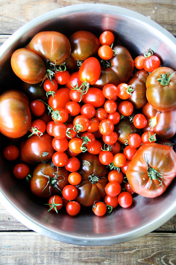 A bowl just-picked tomatoes.