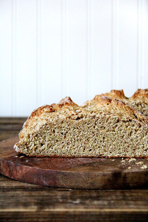 A crumb shot of whole wheat Irish soda bread.