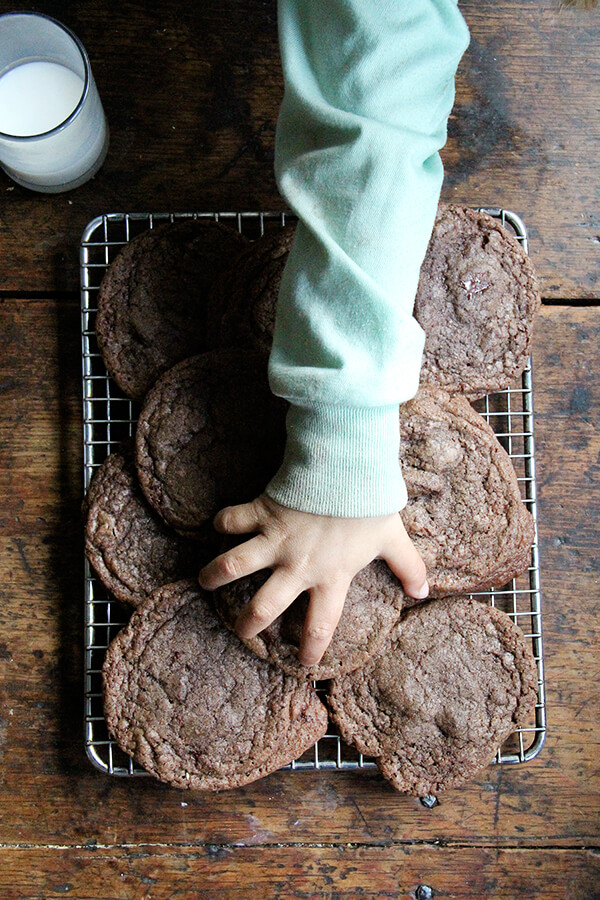 These double chocolate cookies are very delicious. Shaped balls can stay for days in the fridge in a ziplock back or airtight container. // alexandracooks.com