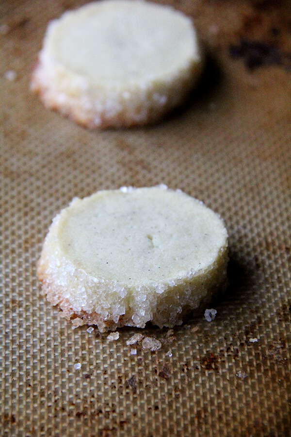Close up shot of a just-baked vanilla bean sable cookie on a sheet pan.