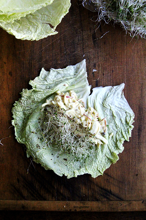 savoy cabbage wrap