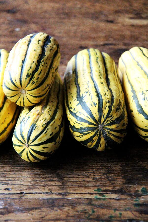 A table piled high with delicata squash.