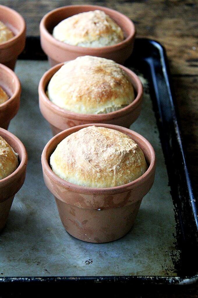 "Bread baked in a flowerpot. Brushed with butter, sprinkled with sea salt, does anything say, ""I love you Mom!"" more than this flower pot bread? // alexandracooks.com"
