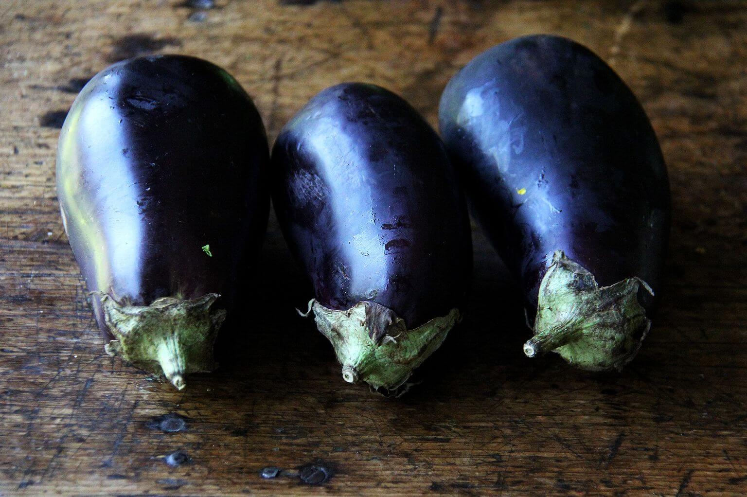 eggplant rounds