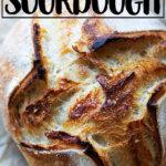Just-baked sourdough loaf.