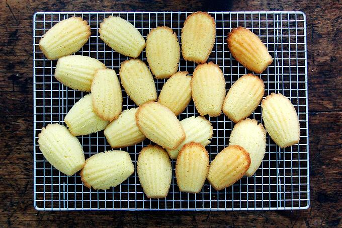 Just-baked lemon madeleines cooling on a rack.