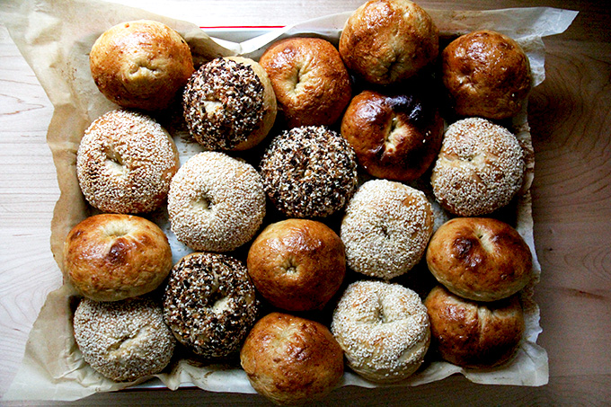 Just baked bagels all together.