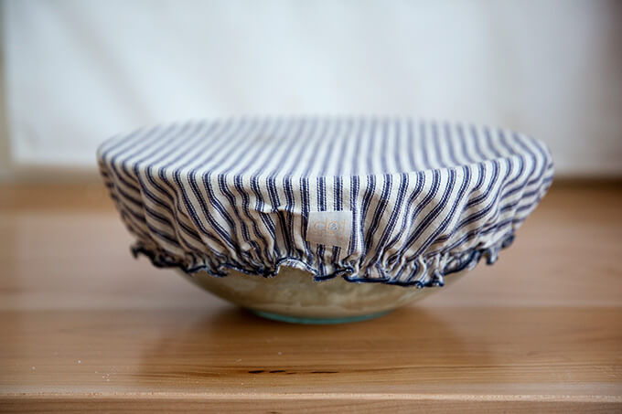 dough rising, Dot and Army cloth bowl cover