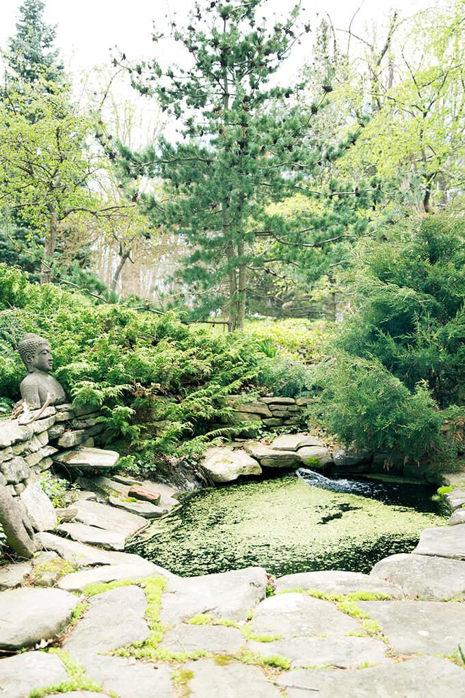 Margaret Roach's pond