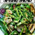 A bowl of spring fattoush salad.