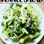 Shaved fennel and avocado salad with currants.