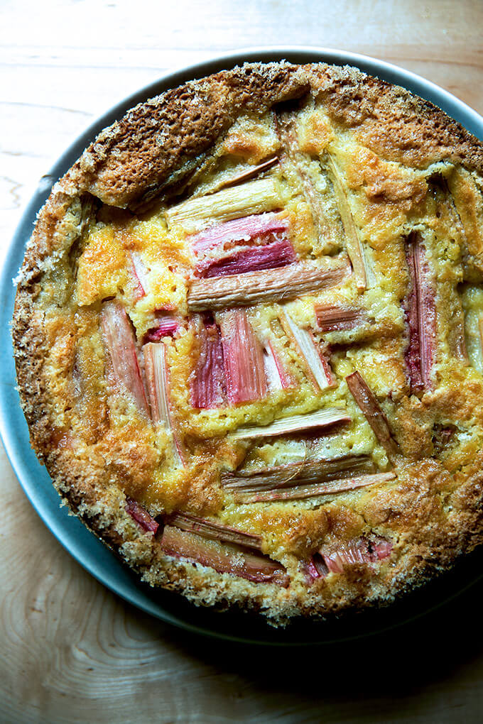 rhubarb custard cake cooled and ready to eat.