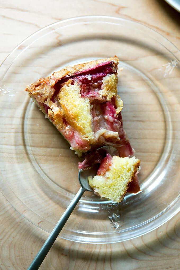 A slice of rhubarb custard cake.