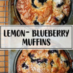 Lemon-blueberry muffins in their tin.