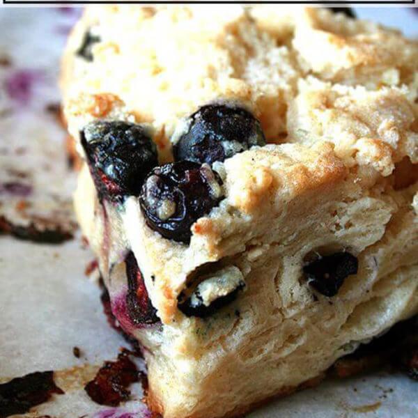 Buttermilk-blueberry scone up close.