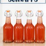 Four bottles of rhubarb schnapps.
