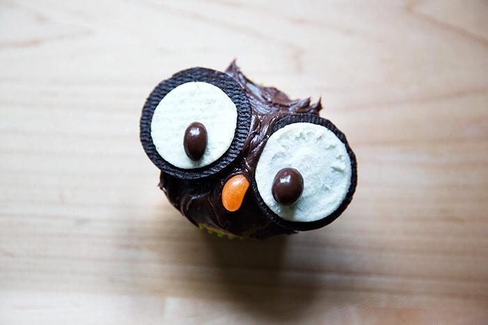 A single owl cupcake.