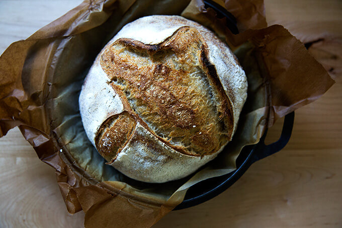 Just-baked high hydration sourdough bread.