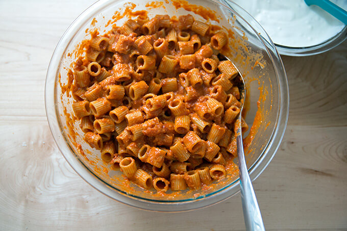 A bowl of pasta tossed with vodka sauce.
