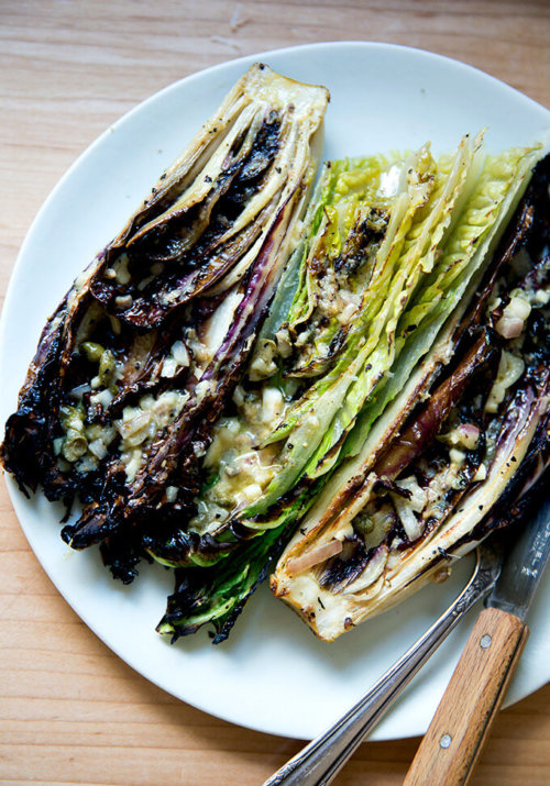 "A plate of ""grilled"" Romaine salad with anchovy dressing."