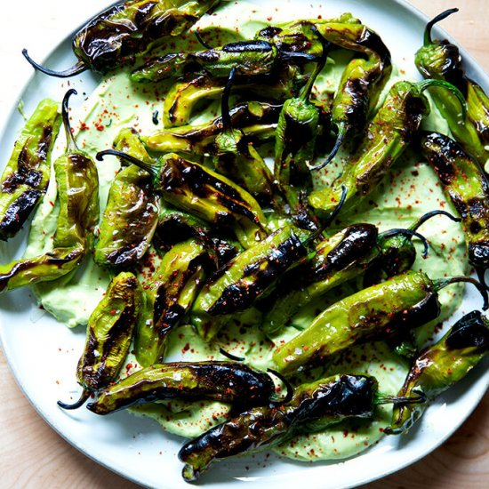 Blistered Shishito Peppers with Avocado Crema