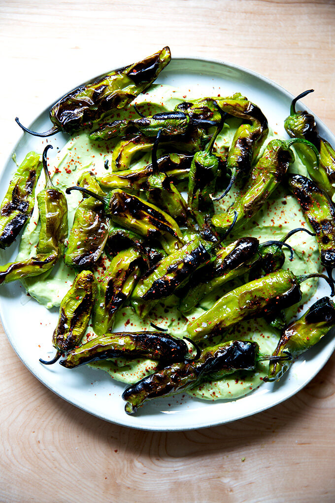A platter of broiled shishito peppers with avocado cream.