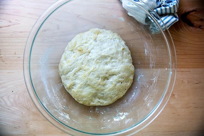 Risen pita bread dough in a bowl.