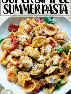A bowl of pasta tossed with cherry tomato sauce, pine nuts, basil and mozzarella.