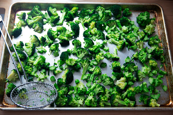 Blanched broccoli on a sheet pan.