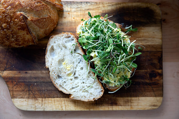 An egg salad sandwich topped with sprouts.