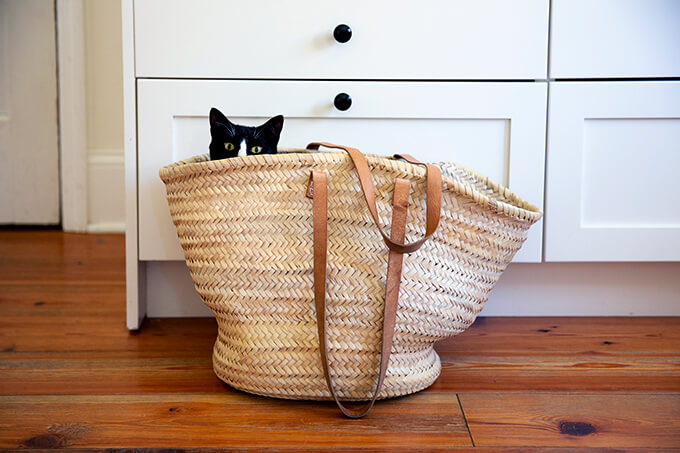 A straw bag with a cat in it.