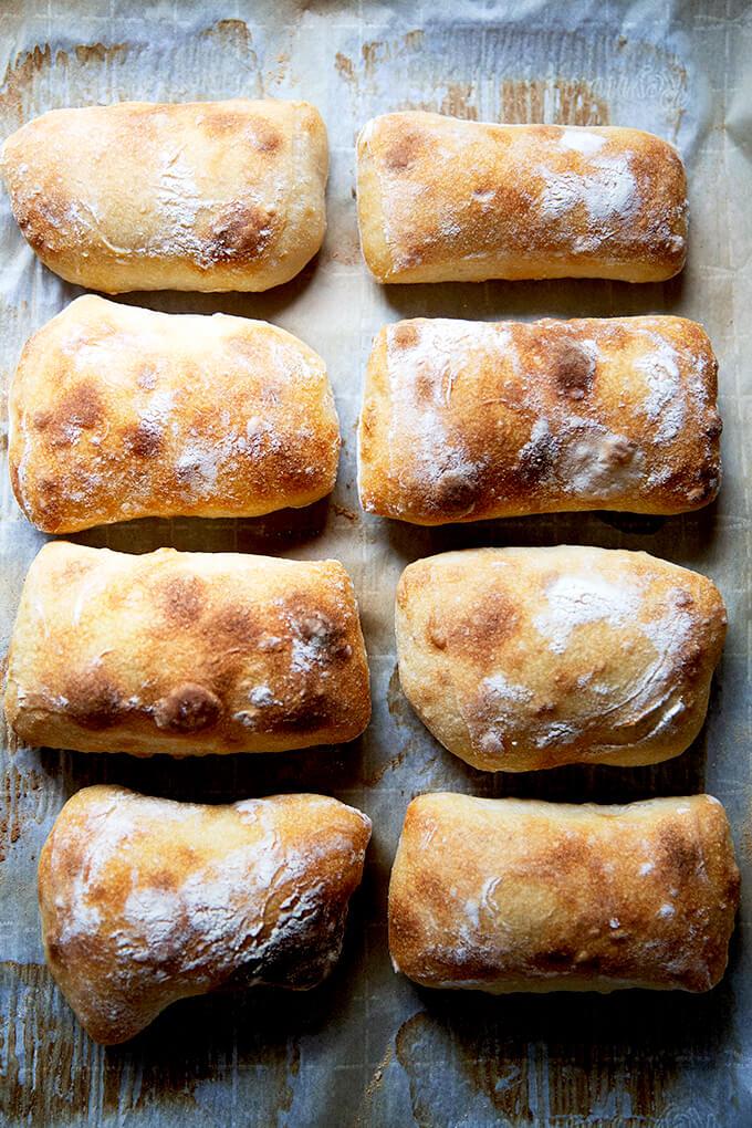 Just-baked sourdough ciabatta rolls on a sheet pan.