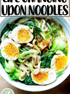 A bowl of life-changing udon noodles.