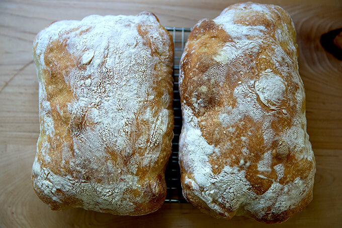 Two freshly baked loaves of ciabatta bread.