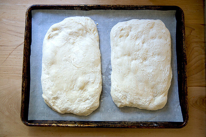 Two loaves of unbaked ciabatta bread on a sheet pan.